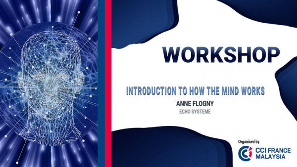 Workshop : Introduction to how the mind works